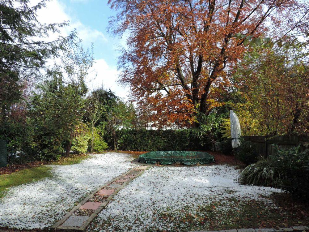 Blick in den Garten samt Außenpool